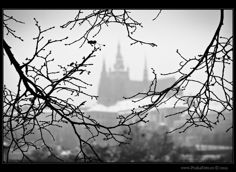 Fotografie Prahy